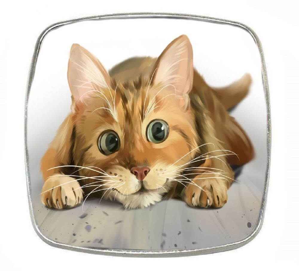 Lets Play - Ginger Cat - Chrome Finish Metal Magnet
