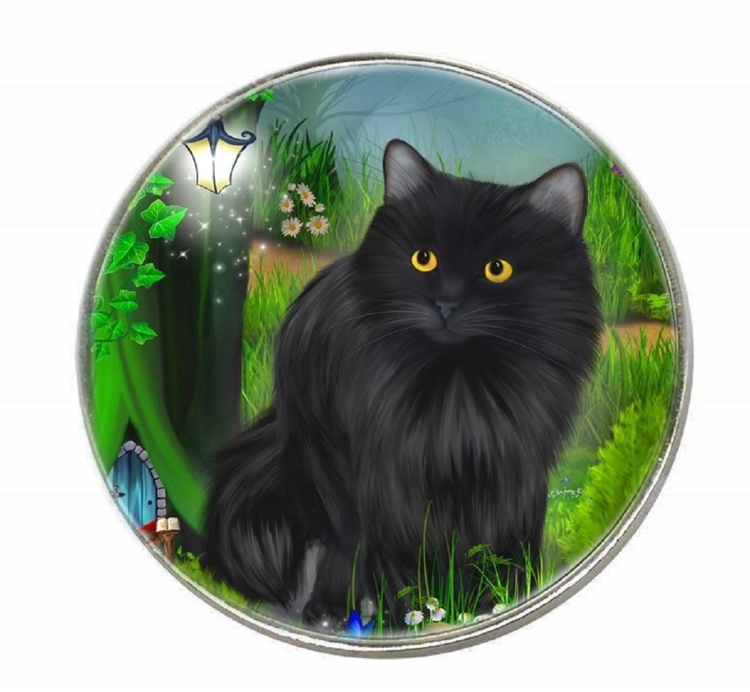 Fantasy Cat - Enchanted Curiosity - Chrome Finish Metal Magnet