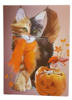 Pumpkin - Canvas Picture WAS £13.49
