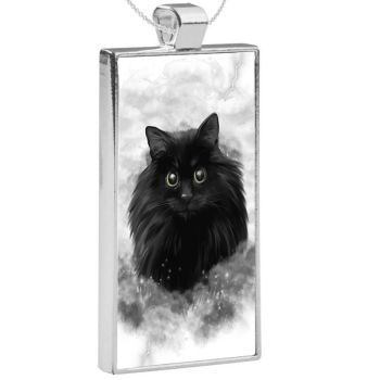Silver Plated Pendant & 24 Inch Chain - Storm