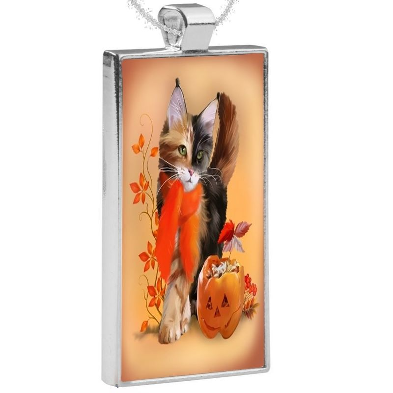 Silver Plated Pendant & 24 Inch Chain - Pumpkin