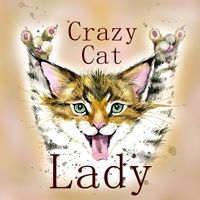crazy cat lady categ image