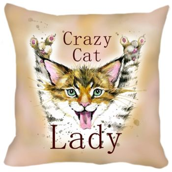 Crazy Cat Lady Cushion WAS £19.99