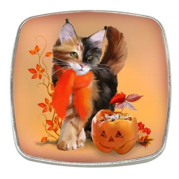 Pumpkin - Chrome Finish Metal Magnet