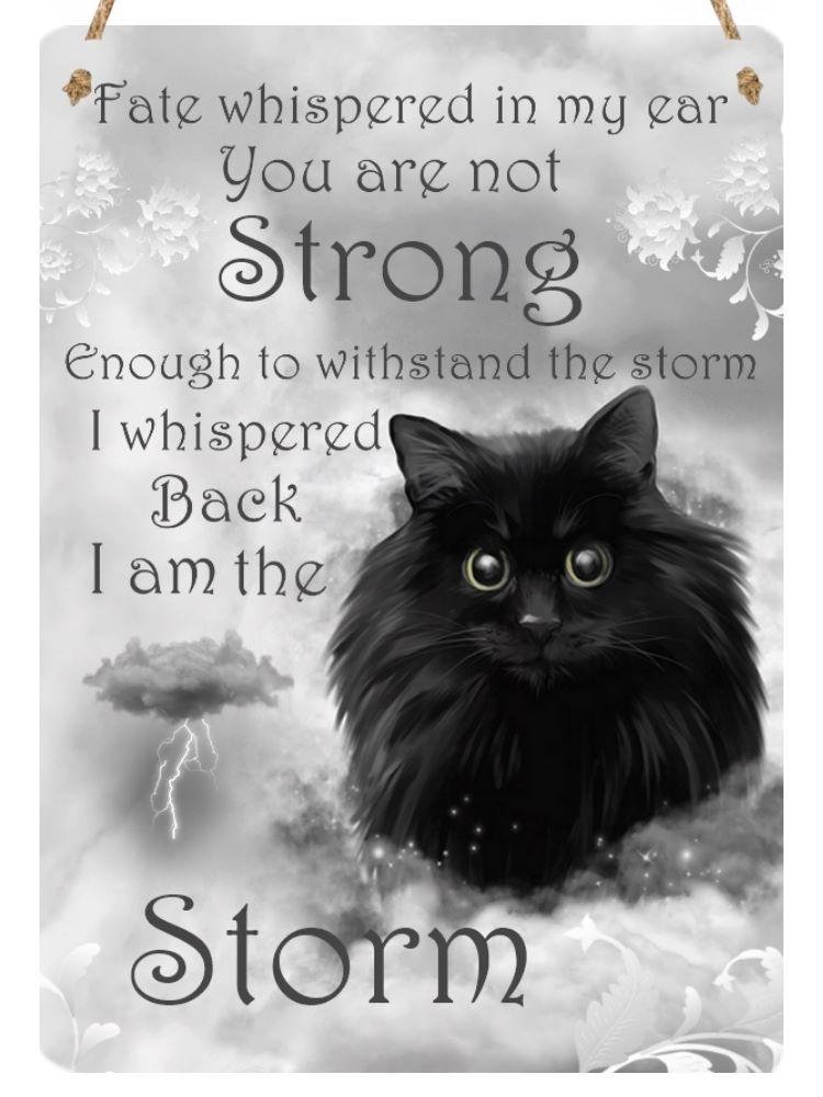 Hanging Metal Sign - Storm - I am The Storm...