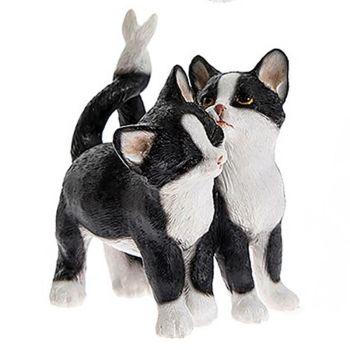 Cute Kitten Pair - Black & White