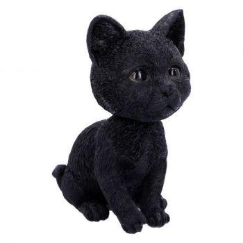Bob Head Cat