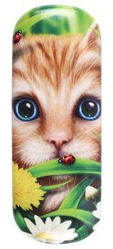 Summer Ginger Cat Glasses Case