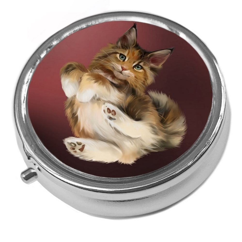 Sandy - Maine Coon - Metal Pill Box