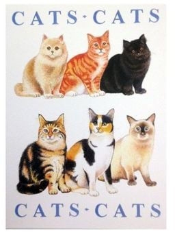 Cats Cats Cats, Greetings Card Blank