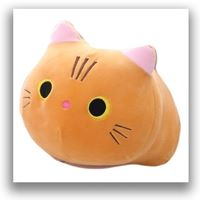 Cat Plushies & Cushions