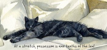 Magnificent Moggies Greetings Card - Stretch