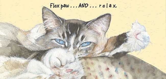 Magnificent Moggies Greetings Card - Paw