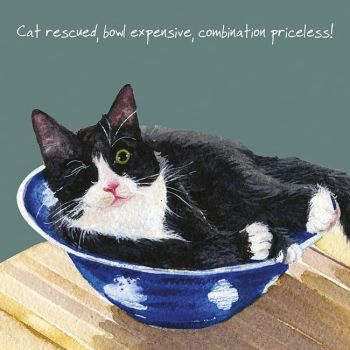 Black & White Rescue Cat Greetings Card