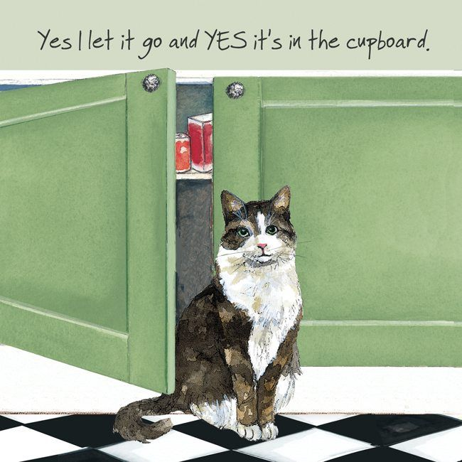 Happy Cat Greeting Card – Let go