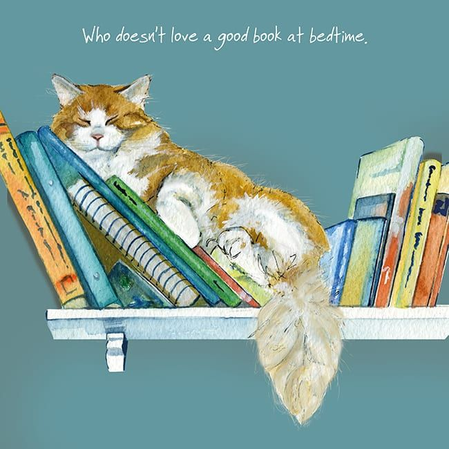 Happy Cat Greeting Card – Ginger Cat - Bedtime