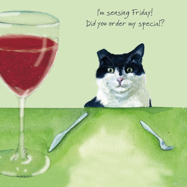 Black & White Cat - Friday Special - Greetings Card