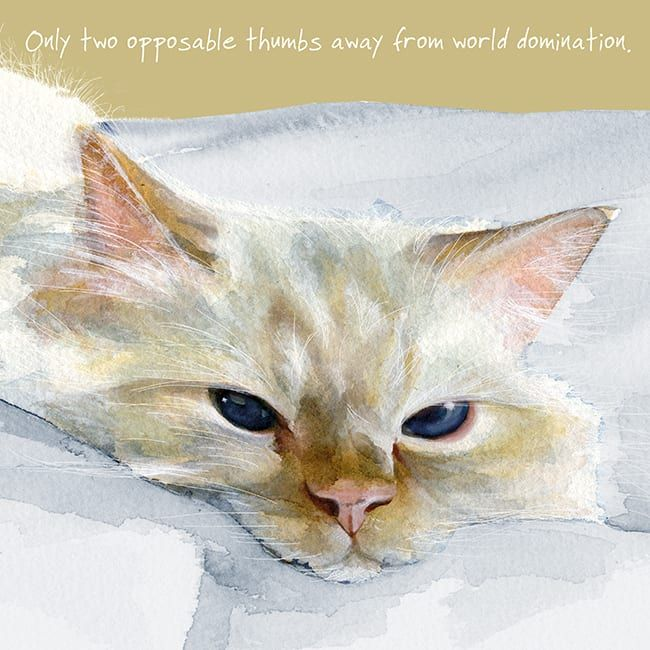 Happy Cat Greeting Card – World Domination