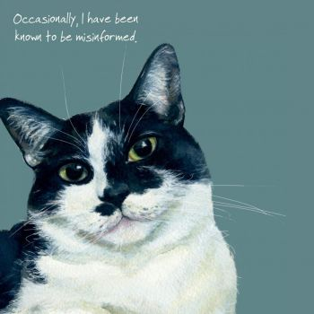 Happy Cats Greeting Card - Bossy Cat