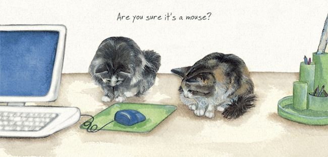 Magnificent Moggies Greetings Card - Office Cats