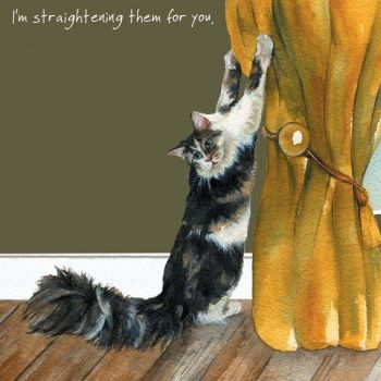 Happy Cat Greeting Card – Curtain Straightening