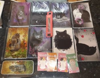 Magic Cat Notebooks Bundle 2