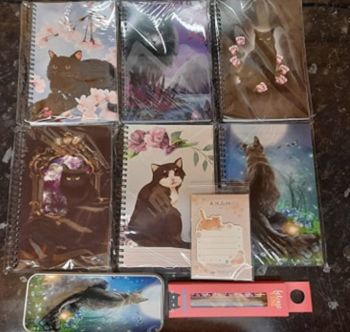 Magic Cat Notebooks Bundle 3 (Moongazer Pencil Tin)