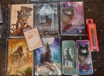 Magic Cat Notebooks Bundle 7 (2 x pencil tins)