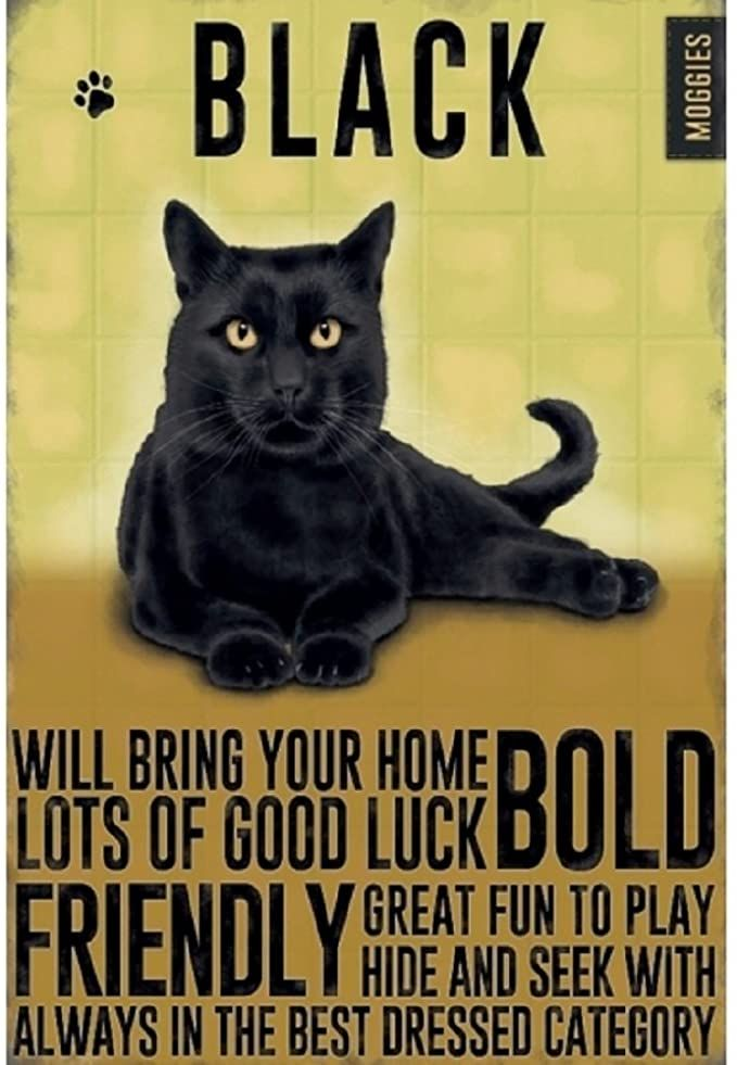 Mini Metal Dangler Metal Sign - Black Cat
