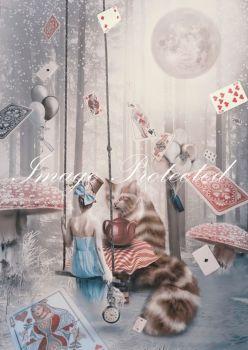 Alice & Her Cat