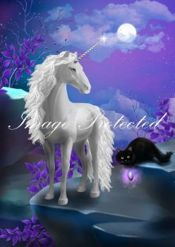White Unicorn & Black Cat