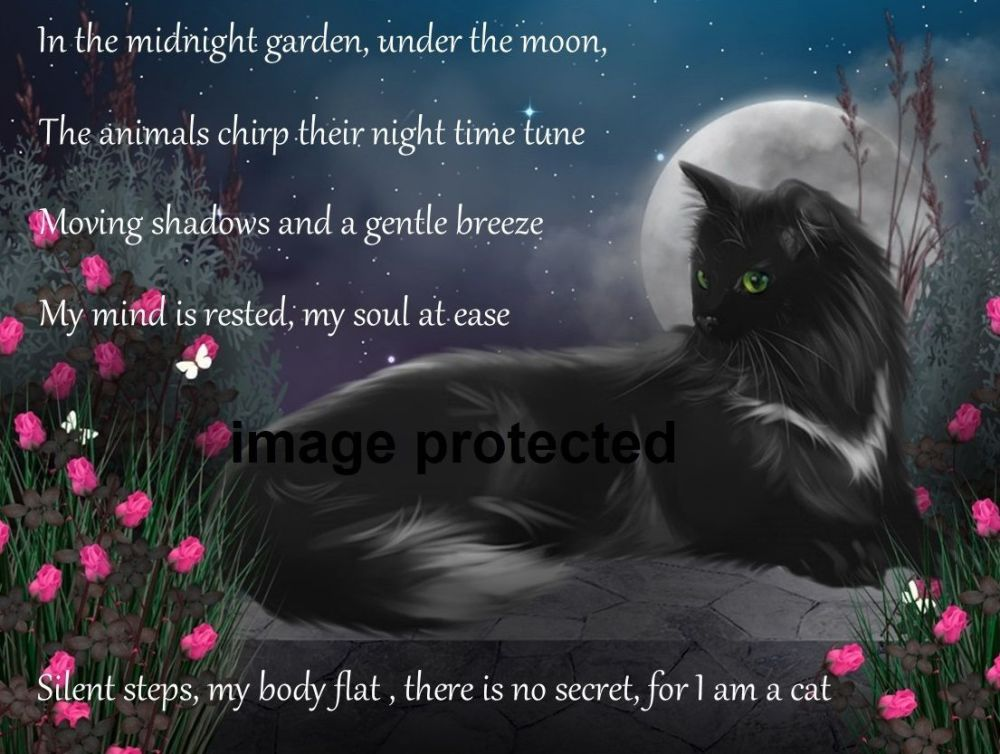 The Midnight Garden (With Poem)-  A4/A3