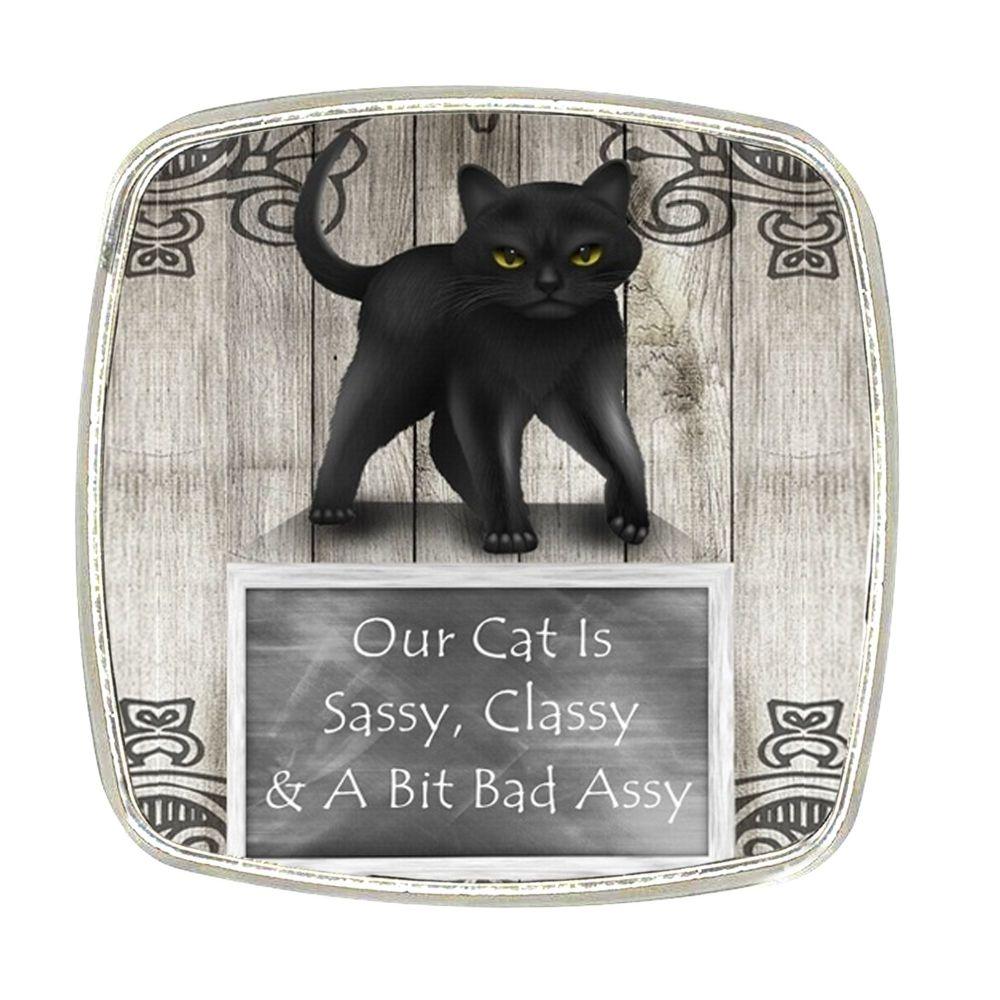 Chrome Finish Metal Magnet - Sassy Cat