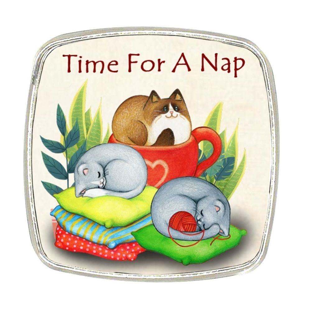 Chrome Finish Metal Magnet - Time For A Nap