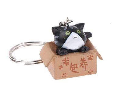 Cat In A Box Keyring - Black & White Cat
