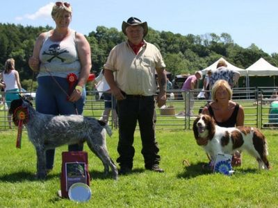 Gundog Championship Winner Sponsored By TP Feeds