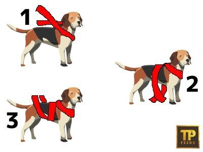 Wrap diagram instructions for dogs