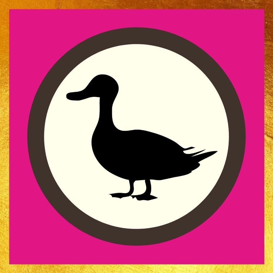 Duck Treats
