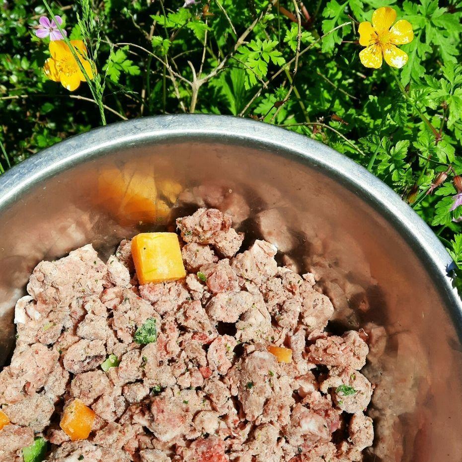 TP Feeds Scottish Turkey Complete