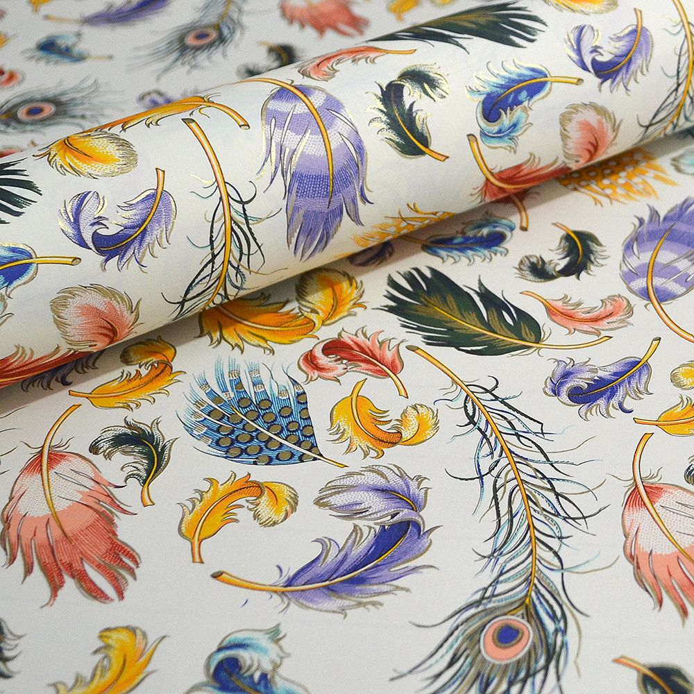 Multi-coloured Feathers Gift Wrap