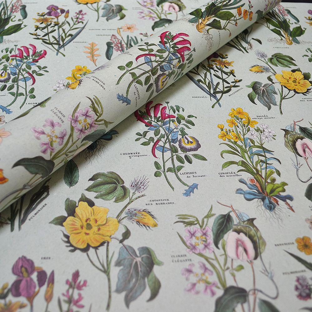 Botanical Bouquets