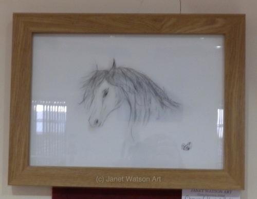 Ah Polo's Yum :) Charcoal Collection by (c) Janet Watson Art - Original Art