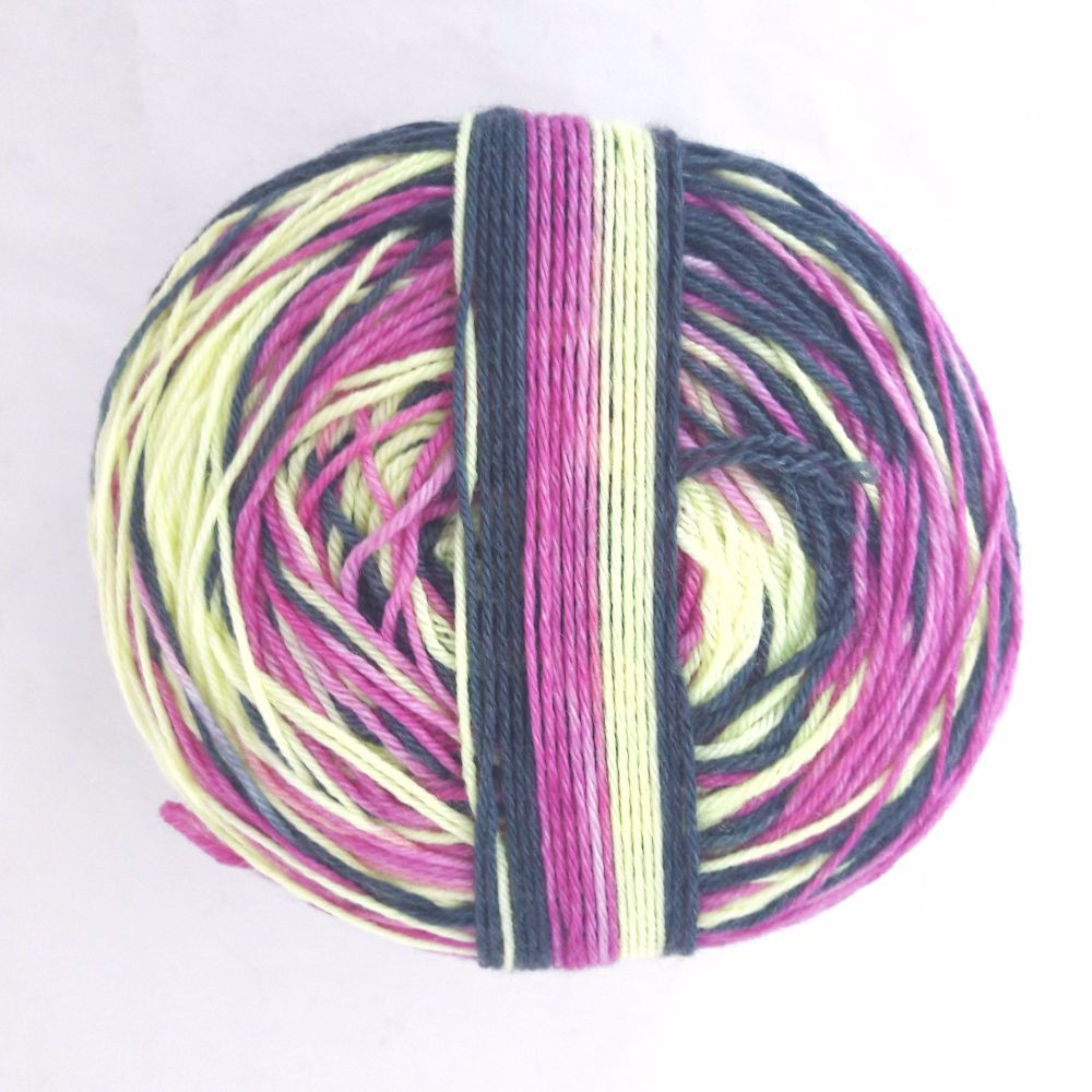 Raspberry Twist Self Striping Sock Yarn