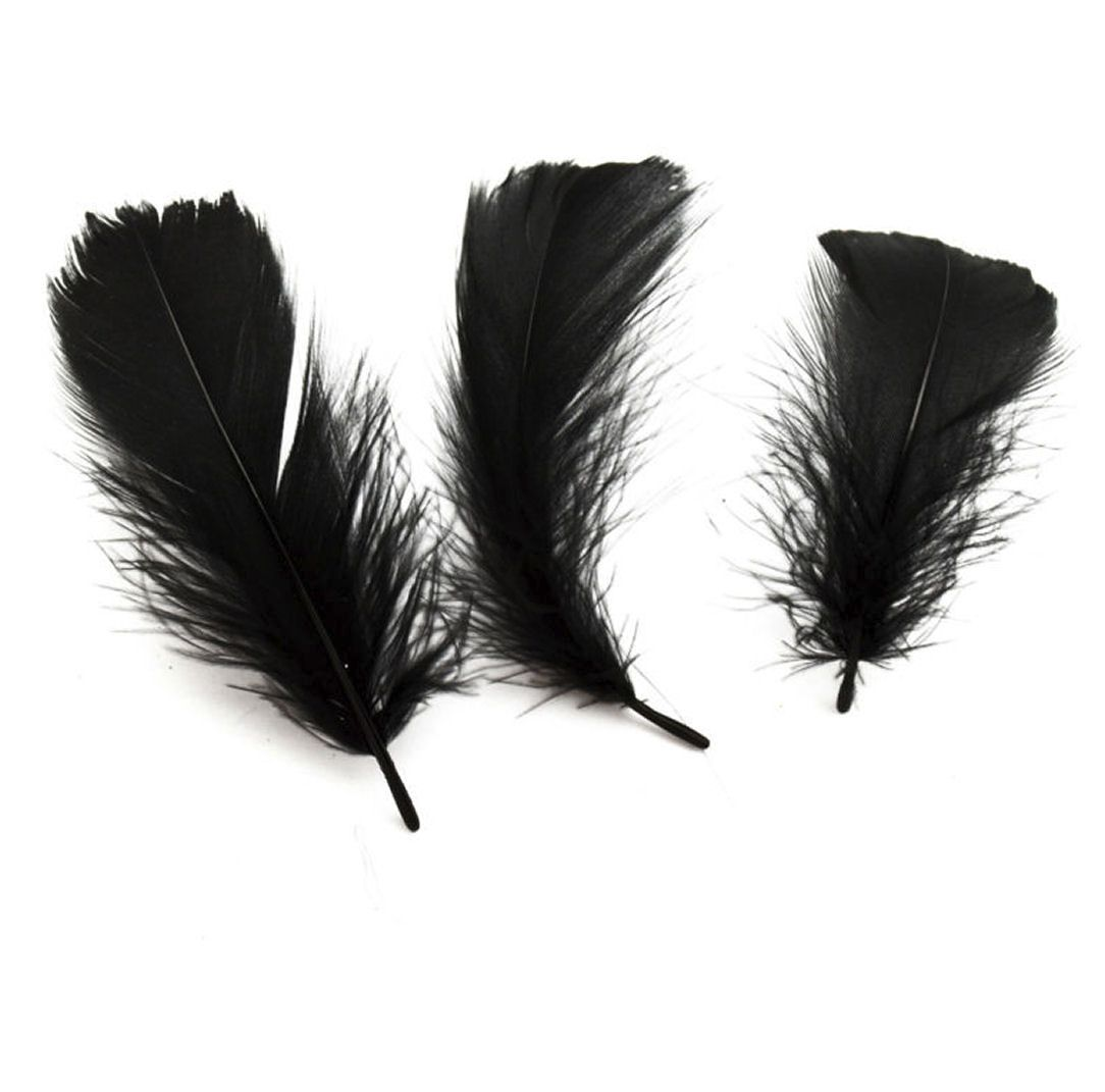 Black Goose Coquille Feathers x 25