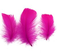 Dark Pink Goose Coquille Feathers x 25