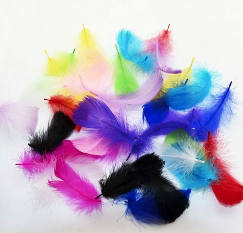 Goose Coquille Feathers Assorted x 50