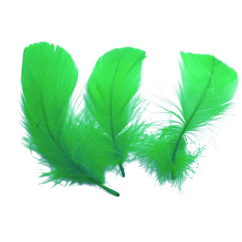 Green Goose Coquille Feathers x 25
