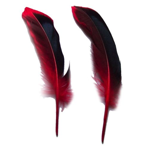 Red Satinette Duck Feathers x 4