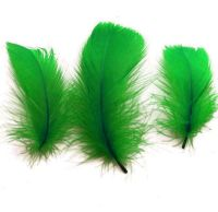 Kelly Green Goose Coquille Feathers x 25