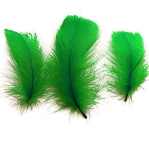 Kelly Green Goose Coquille Feathers x 50